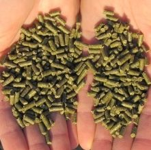 Alpaka-Zusatzfutter