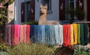 gefärbte Alpakawolle